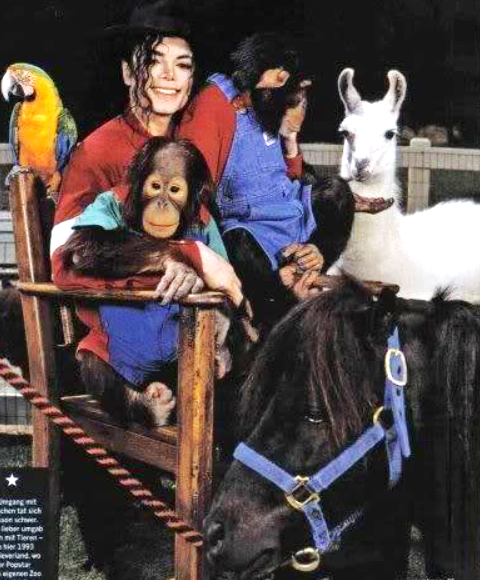 http://www.innermichael.com/wp-content/uploads/2013/01/MJ-and-animals2.png